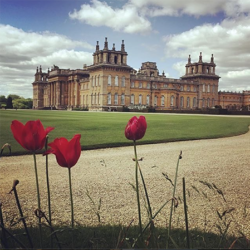 Artist Residence Oxfordshire, Blenheim Palace, The Cotswolds